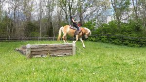 Judy is jumping Novari for the first time in a defensive position that is much safer than the traditional way.