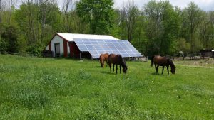 Our stable is not only horse friendly but also environmentally friendly. We've used recycled industrial materials to make a stronger and safer farm.